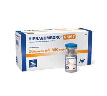 Hipragumboro GM97 x 5000 Dosis x 10 un.